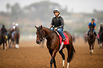AUGUST 28, 2021:  Pappacap (Gun Runner) with Joe Bravo aboard, prepares for the Del Mar Futurity at Del Mar Fairgrounds in Del Mar, California on August 28, 2021. Evers/Eclipse Sportswire/CSM