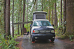 Willaby Campground on Lake Quinault has wonderful lakdside camping in Olympic National Forest, just outside Olympic National Park.  Olympic Penninsula, Washington.  Outdoor Adventure. Olympic Peninsula.  Available exclusively through www.spacesimages.com