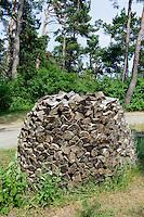 Brennholz in Nida auf der kurischen Nehrung, Litauen, Europa