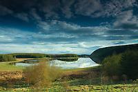 Craighall Dam, Neilston, East Renfrewshire