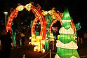 Illuminations at Toshimaen amusement park in Tokyo