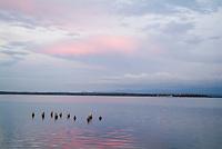 Rippled waters of Cienfuegos Bay at sunset from Punta Gorda, Cuba.