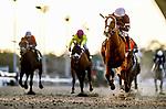02-15-20 Rachel Alexandra Stakes and Undercard Fair Grounds
