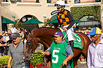 """DEL MAR, CA  JULY 28: #5 Paradise Woods, ridden by Mike Smith,, in the paddock before the Clement L Hirsch Stakes (Grade 1) a Breeders' Cup """"Win and You're In"""" Distaff Division (Photo by Casey Phillips/Eclipse Sportswire/CSM)"""