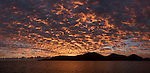 Great Barrier Reef, Australia; a panoramic view of pink clouds filling the sky at sunrise near the entrance to Cairns harbor