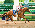 Louisville, KY - June 18: #3 Paid Up Subsccriber wins the Fleur de Lis at Churchill Downs on June 18, 2016 in Louisville, Kentucky. (Photo by Jessica Morgan/Eclipse Sportswire/Getty Images)