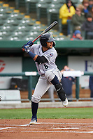 Cedar Rapids Kernels Gilberto Celestino (8) at bat during a Midwest League game against the South Bend Cubs at Four Winds Field on May 8, 2019 in South Bend, Indiana. South Bend defeated Cedar Rapids 2-1. (Zachary Lucy/Four Seam Images)