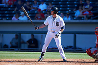 Mesa Solar Sox third baseman Kody Eaves (28), of the Detroit Tigers organization, at bat during an Arizona Fall League game against the Glendale Desert Dogs on October 28, 2017 at Sloan Park in Mesa, Arizona. The Solar Sox defeated the Desert Dogs 9-6. (Zachary Lucy/Four Seam Images)