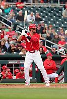 Kyle Farmer - Cincinnati Reds 2020 spring training (Bill Mitchell)