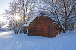 A vintage outbuilding with faded paint in a snow covered landscape, with afternoon sun rays filtering through trees.