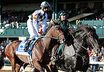 LEXINGTON, KY - OCTOBER 07:  #14 Daddys Lil Darling and jockey Corey Lanerie before finishing 2nd in the 65th running of the Darley Alcibiades (Grade 1) $400,000 win and you're in Breeder's Cup Juvenile Fillies Division. Keeneland Race Course.  October 7, 2016, Lexington, Kentucky. (Photo by Candice Chavez/Eclipse Sportswire/Getty Images)