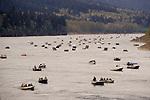 Salmon fishermen in boats across Columbia River just below Bonneville Dam; Oregon.
