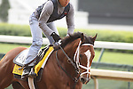 Discreetly Mine works at Churchill Downs. 04.21.2010