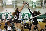 2013 girls volleyball: St. Francis High School