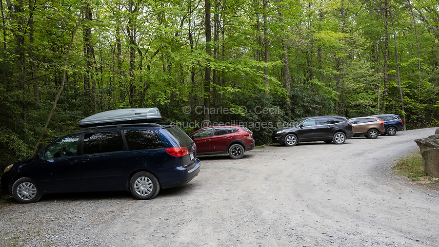 New River Gorge National Park, West Virginia.  Nuttall Trailhead Parking Lot for Fern Creek Trailhead.