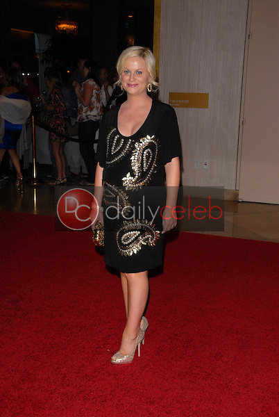 Amy Poehler<br /> at the 35th Annual Gracie Awards Gala, Beverly Hilton, Beverly Hills, CA. 05-25-10<br /> David Edwards/DailyCeleb.Com 818-249-4998