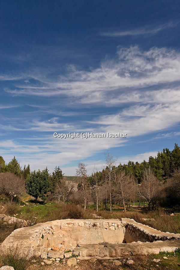 Israel, Jerusalem Mountains. The pool at Ein Kobi