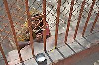 Women Beggar at Varanasi Sarnath  Buddhist Area, Temple and Dhaekh Stupa India