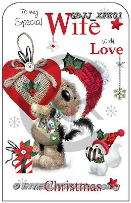 Jonny, CHRISTMAS ANIMALS, WEIHNACHTEN TIERE, NAVIDAD ANIMALES, paintings+++++,GBJJXFE01,#xa#