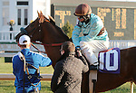 Flying Bird and Jesus Castanon win the 8th race at Churchill Downs.  November 24, 2012.
