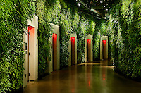 Living wall in East Conservatory, Longwood Gardens, Kennet Square, Pennsylvania