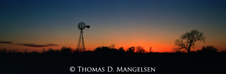 The sun sets across a classic Midwestern landscape, complete with the silhouettes of familiar cottonwood trees, a windmill and skeins of geese in the distance..Platte River, Nebraska