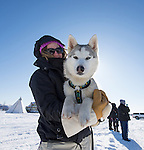 Beautiful sled dog in arms of owner at yellowknife, NT