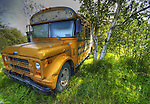 Schoolbus in the shade in the Woodyard in Yellowknife