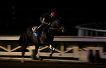 October 22, 2021: Rock Your World works at Santa Anita Park in Arcadia, California on October 23, 2021. Evers/Eclipse Sportswire/CSM