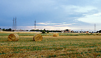 Balle di paglia su un campo a Cassina Nuova frazione di Bollate, a nord di Milano --- Straw bales on a field in Cassina Nuova, small village of Bollate north of Milan