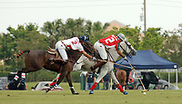 WELLINGTON, FL - APRIL 19, 2006: Orchard Hill Advances to  the Finals  in the Stanford U.S. Open This Sunday at International Polo Club<br /> <br /> Orchard Hill tied the game at 12-12 on a 30-yard penalty shot by Paco de Narvaez with 3:29 remaining. Sixty-four seconds later, de Narvaez passed to Jeff Hall, who passed to a wide-open Galindo in front of the goal as Orchard Hill took a 13-12 lead.<br /> <br /> De Narvaez scored on a breakaway with 1:21 left in the game, despite the efforts of Bautista Heguy, to round out the scoring. Pony Express did not get off a shot in the final minute.<br /> <br /> Hall added four goals for Orchard Hill and Galindo finished with three goals. Van Andel did not score.<br /> <br /> Pancho Bensadon led Pony Express with five goals, Bautista Heguy scored four goals and Alberdi added three goals. Patron Bob Daniels did not score. <br /> <br /> <br /> People;  U.S. Open Polo Championship
