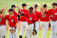 Tim Anderson (2) of the Kannapolis Intimidators slaps hands with teammates following their victory over the Greensboro Grasshoppers at CMC-Northeast Stadium on July 13, 2013 in Kannapolis, North Carolina.  The Intimidators defeated the Grasshoppers 7-5.   (Brian Westerholt/Four Seam Images)