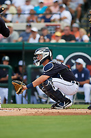 Detroit Tigers catcher Grayson Greiner (17) during a Grapefruit League Spring Training game against the New York Yankees on February 27, 2019 at Publix Field at Joker Marchant Stadium in Lakeland, Florida.  Yankees defeated the Tigers 10-4 as the game was called after the sixth inning due to rain.  (Mike Janes/Four Seam Images)