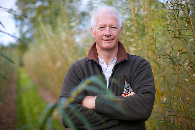 Images from Kings Farm Barn, near Cowfold, West Sussex. Owned and run by Adrian Rumble ( pictured ) cultivating willow rods for hedging and craftwork, as well as other plants such as eucalyptus trees.
