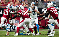 Photography coverage of the Carolina Panthers v. The Arizona Cardinals, during their Sunday afternoon NFL game at State Farm Stadium in Phoenix, Arizona.<br /> <br /> Charlotte Photographer - Patrick SchneidePhoto.com