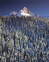 Pinnacle Peak above forested Mazama Ridge in winter, Mount Rainier National Park, Washington State