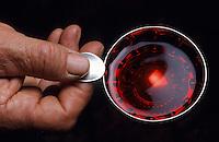 Europe/France/Rhône-Alpes/69/Rhône/Morance: Antoine Lassalle - Vignoble du Beaujolais - Dégustation de vin au taste vin