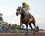HALLANDALE BEACH, FL - APRIL 01:  #4 Always Dreaming (FL) wth jockey John Velazquez on board, wins the Xpressbet Florida Derby (Grade I) at Gulfstream Park on April 01, 2017 in Hallandale Beach, Florida. (Photo by Liz Lamont/Eclipse Sportswire/Getty Images)