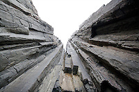 Sea Cliffs of the Tasman Peninsula, Tasmania