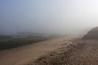 A lone visitor stands on the fog shrouded beach and rocky shore at Pescadero State Beach on the California coast.