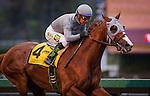 January 6, 2016: California Chrome with Victor Espinoza up wins the San Pasqual Stakes at Santa Anita Park in Arcadia, California. Zoe Metz/ESW/CSM