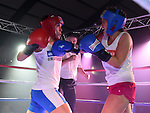 Ardee White Collar Boxing 2014