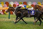 KYOTO,JAPAN-NOVEMBER 20: Mikki Isle #16,ridden by Suguru Hamanaka,wins the Mile Championship at Kyoto Racecourse on November 20,2016 in Kyoto,Kyoto,Japan (Photo by Kaz Ishida/Eclipse Sportswire/Getty Images)