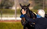 January 30, 2021: Medina Spirit and Bob Baffert at the Robert B Lewis Stakes at Santa Anita Park in Arcadia, California on January 30, 2021. Evers/Eclipse Sportswire/CSM