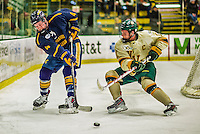 29 December 2013:  Canisius College Golden Griffins defenseman Geoff Fortman, a Freshman from Crystal Lake, IL, keeps the puck away from University of Vermont Catamount forward H.T. Lenz, a Senior from Vienna, VA, in the second period at Gutterson Fieldhouse in Burlington, Vermont. The Catamounts defeated the Golden Griffins 6-2 in the 2013 Sheraton/TD Bank Catamount Cup NCAA Hockey Tournament. Mandatory Credit: Ed Wolfstein Photo *** RAW (NEF) Image File Available ***