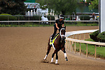 LOUISVILLE, KY - APRIL 28: Outwork (Uncle Mo x Nonna Mia, by Empire Maker) exercises on the track at Churchill Downs, Louisville KY in preparation for the Kentucky Derby. Owner Repole Stable, trainer Todd A. Pletcher. (Photo by Mary M. Meek/Eclipse Sportswire/Getty Images)
