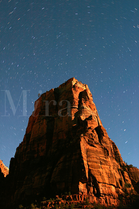 Star trails above Angles Landing lit by moon, Zion National Park, Washington County, U