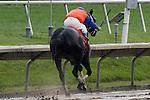 Unbridled Belle  Obeah Stakes at Delaware Park in New Stanton, Delaware 06.20.09