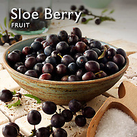 Sloe Berry | Sloes Food Pictures Photos Images & Fotos
