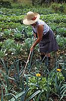 Europe/France/Auvergne/15/Cantal/Ségur les Villas: Mme Cassan dans son potager<br /> PHOTO D'ARCHIVES // ARCHIVAL IMAGES<br /> FRANCE 1990